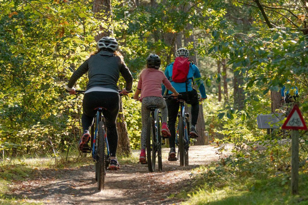 beneficios-del-ejercicio-en-familia-colegio-Washington-4
